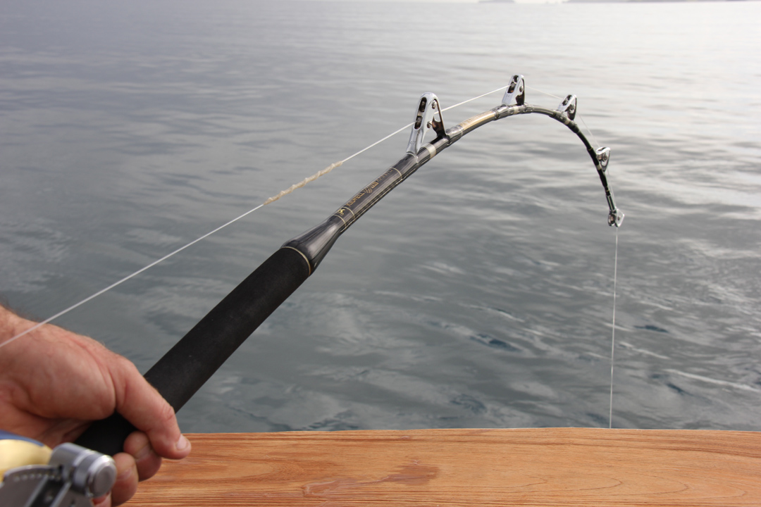 37kg rollered game rod stand up nz game fishing for Fishing rod game