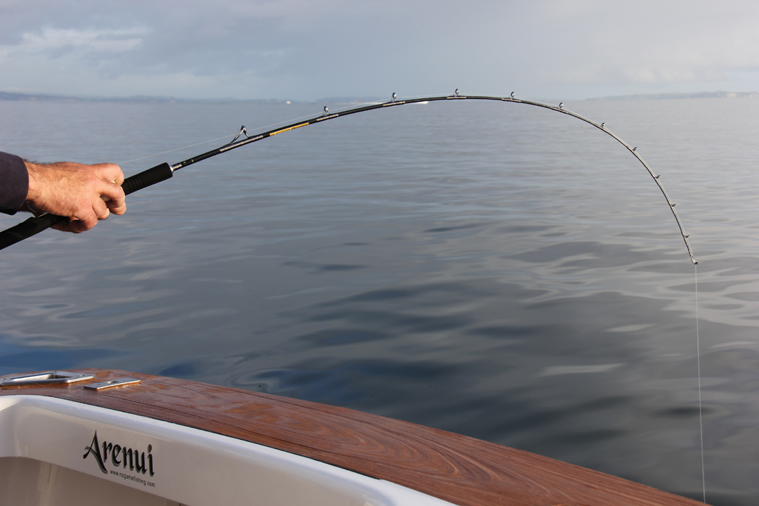 Performance Rods, Arenui Signature Series