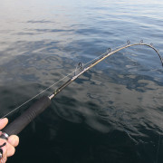 Slow Jig Rods