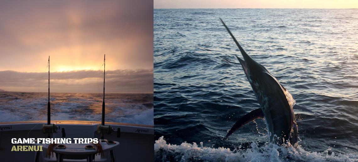 Game Fishing Trips
