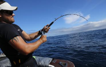 NZ Game Fishing Charter